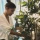 Decora tu casa con plantas con estos consejos